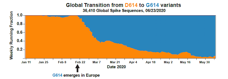 This chart tells the essential story of how the pandemic has shifted over time from orange (the original D type of the virus) to blue (the now-widespread G form, D614G).