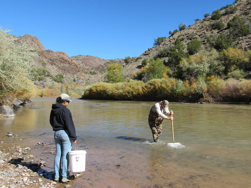 Two Laboratory environmental field team members collect fish and crayfish samples.
