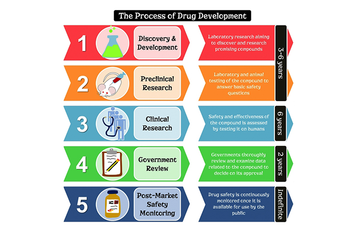 Steps of drug aproval process