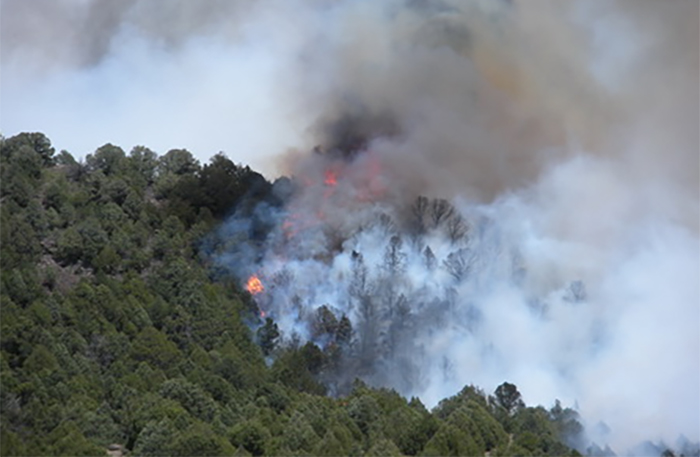Wildfire during Las Conchas