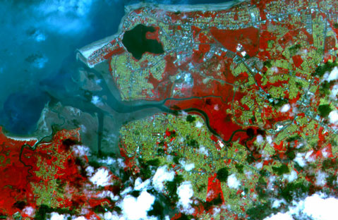 How satellite imagery could combat infectious diseases